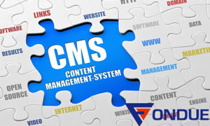 Why do you need a CMS based website